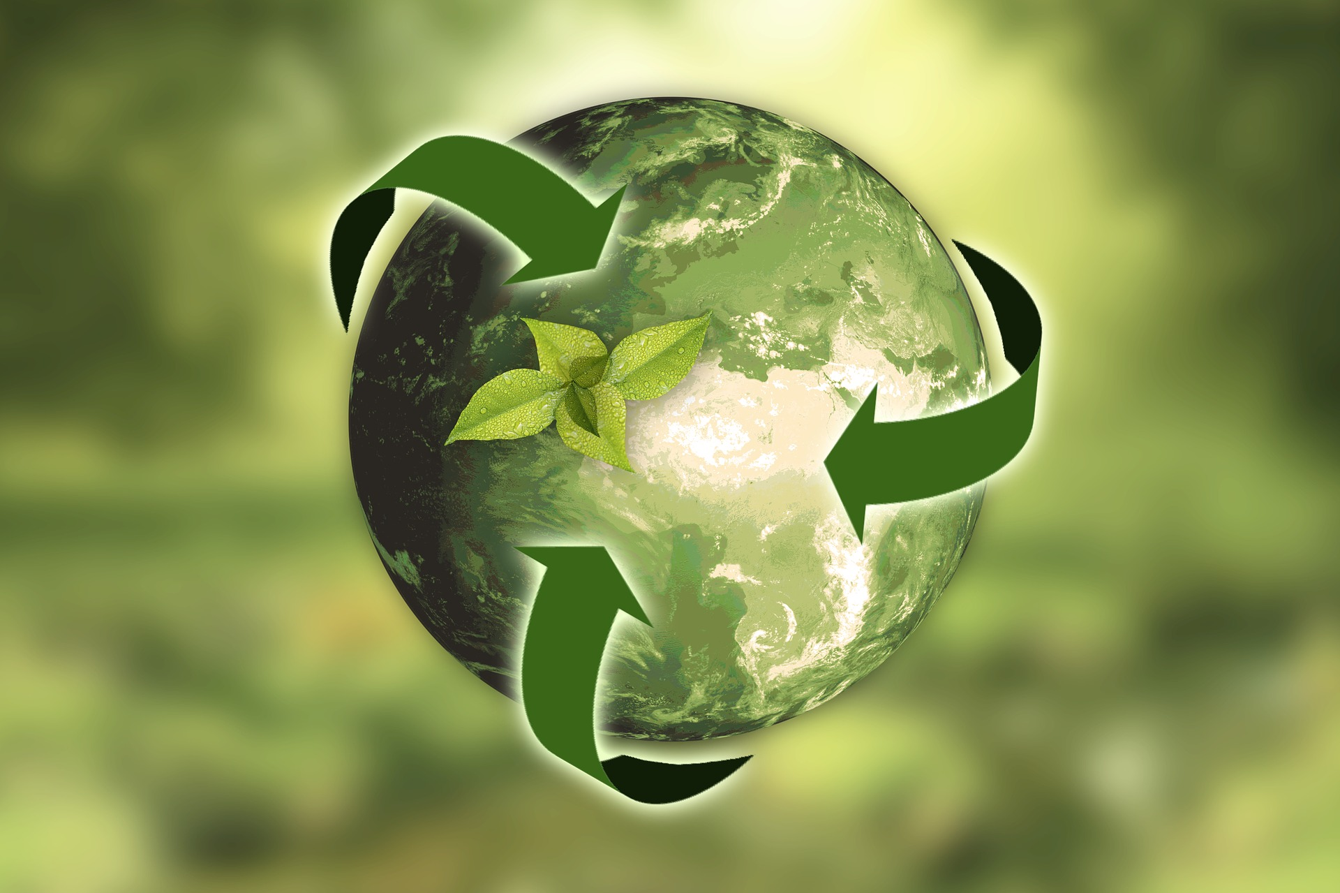 Konkurs ekologiczny Mistrz Recyklingu Maks porządkuje odpady