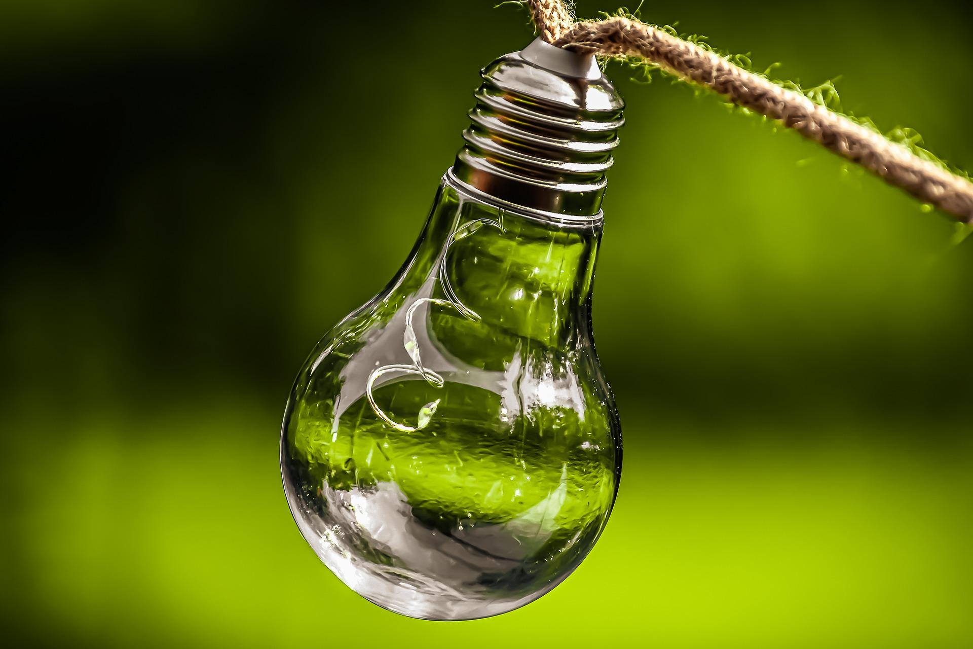 Nasz pomysł naochronę środowiska